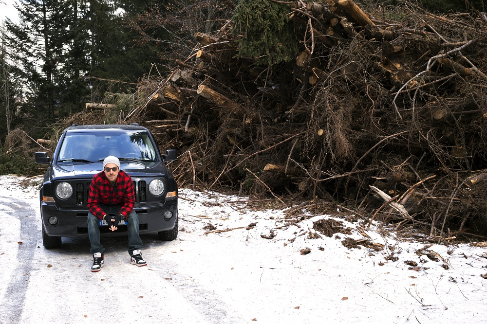 modern American woodman
