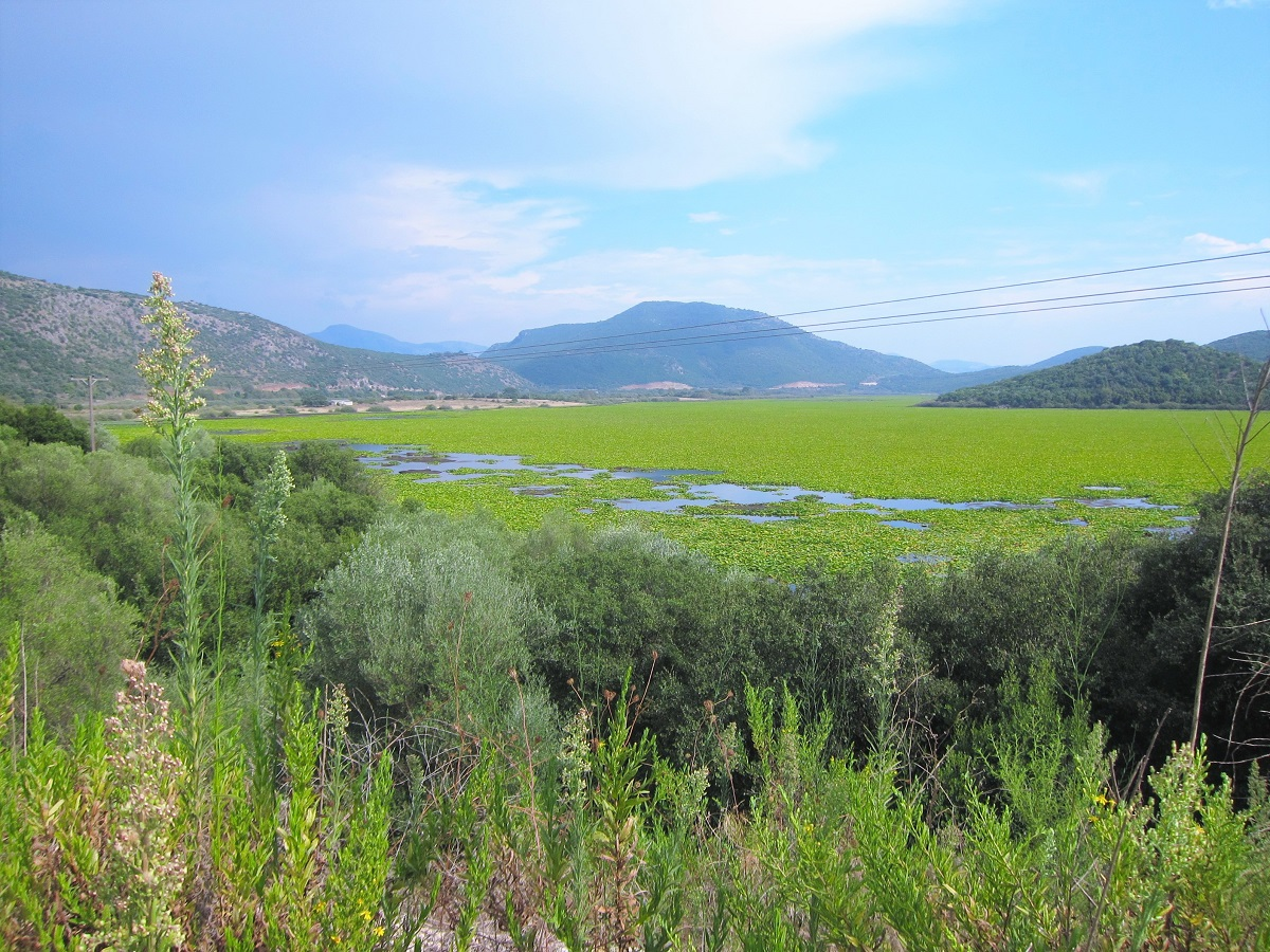 Kalodiki Ninfee lake