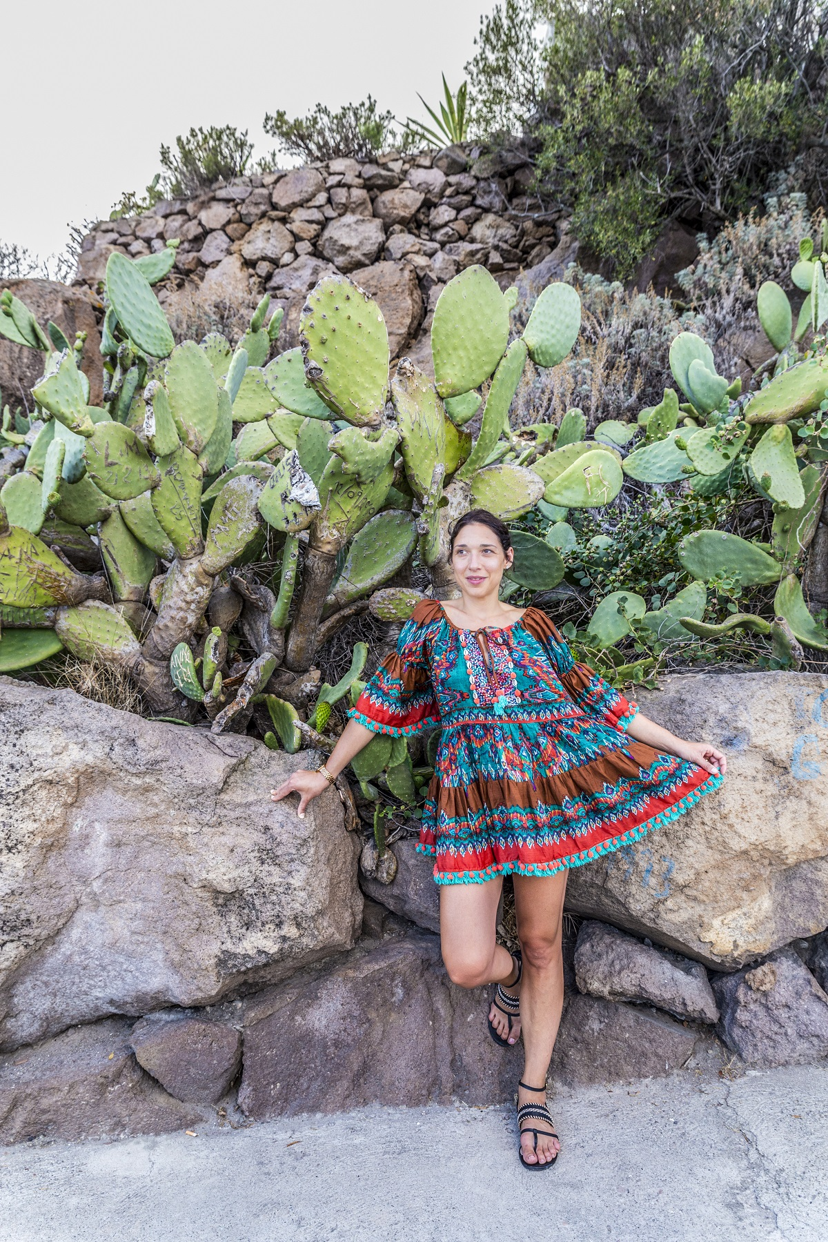 cactus a panarea